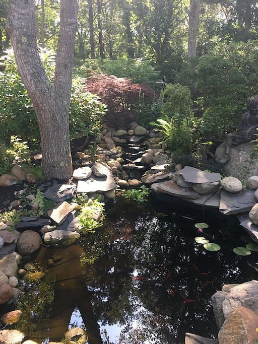 Koi Pond in Front Driveway