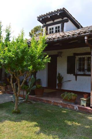 B&B Villa Lupidi Verde