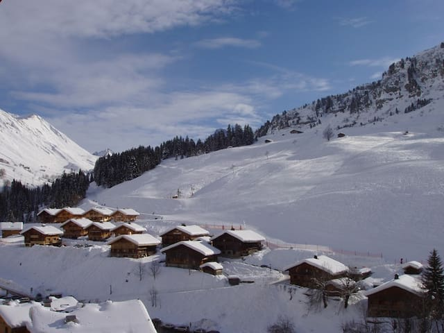 Typical alpine chalet for 17 at the foot of the sl