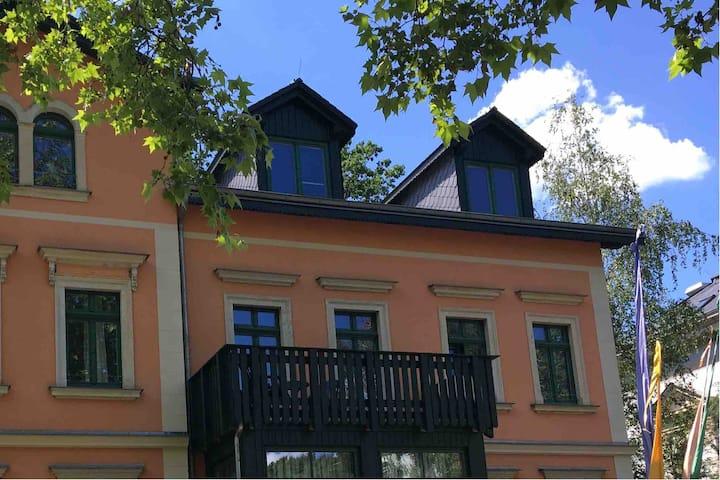 Ideal für Dresdenbesuche Zimmer mit Balkon