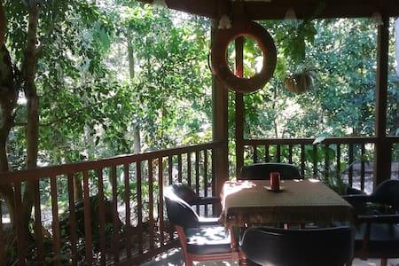 Curumbin Canopy Lodge - Queen Bed 1 - Bungalow