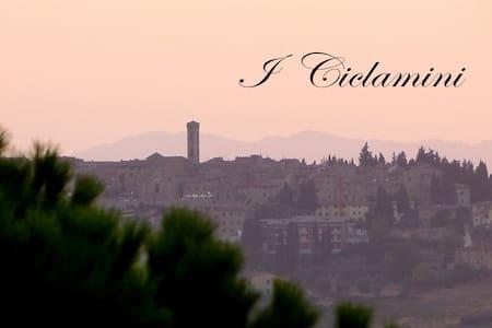 I Ciclamini - San Donato