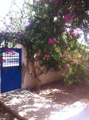 Dar Herminia - Ouled Amor - Casa