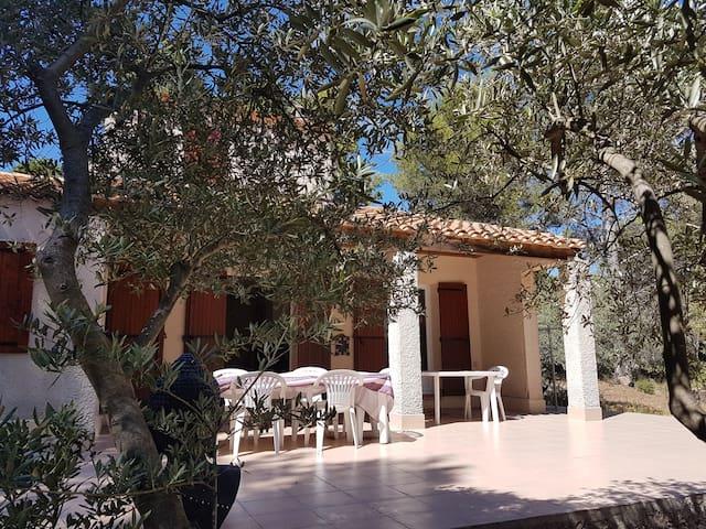 Villa provençale dans la pinède