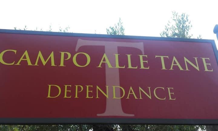 Vacanze nel verde della campagna Toscana.Casa Mola