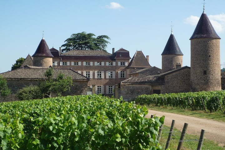 CHASSELAS CASTLE COTTAGE FOR RENT