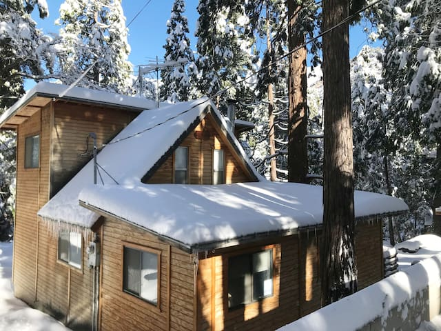 Critter Cabin - WINTER IS COMING!!!
