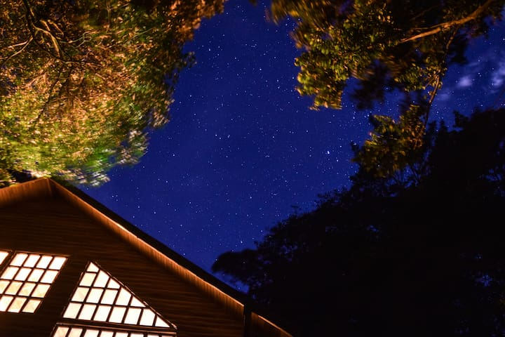 True Cloud Forest Cabin Experience - Monteverde - Casa