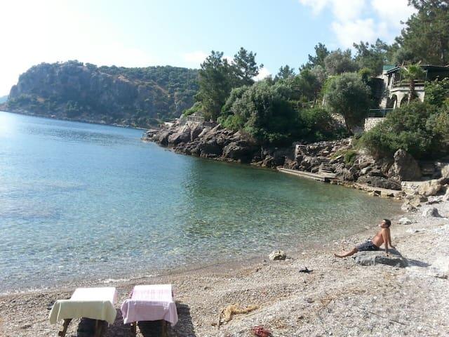 Enjoy sun, 2 beaches & history  in nature