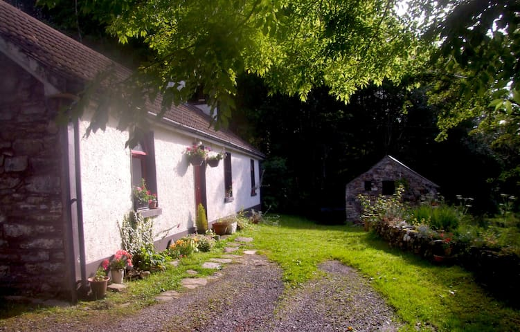 Lough Anna Cottage, Donegal - Glenties - Maison