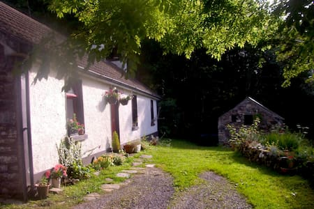 Lough Anna Cottage, Donegal - Glenties - Rumah