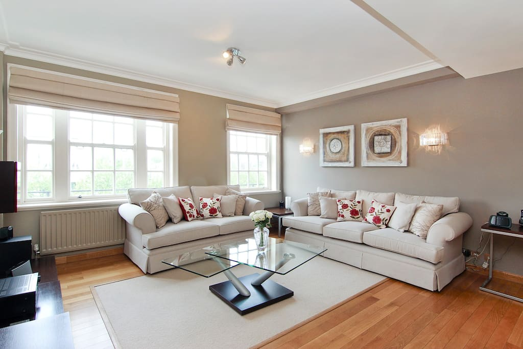 Two large and luxurious sofas in the spacious Lounge