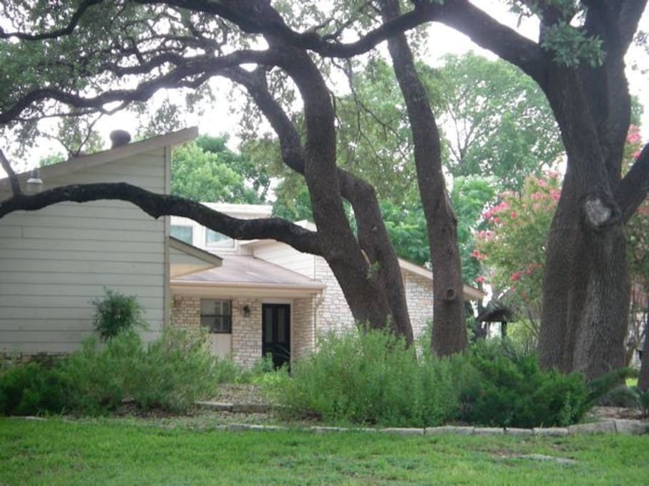 Front Approach Where Large Oaks Provide Welcoming Shade