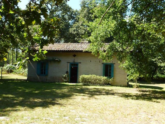 Maison en plein cœur de la foret - Captieux - Haus