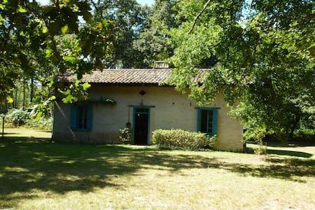 Maison en plein cœur de la foret - Captieux - Casa
