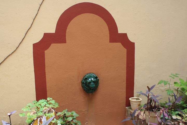 Detalle fuente del patio