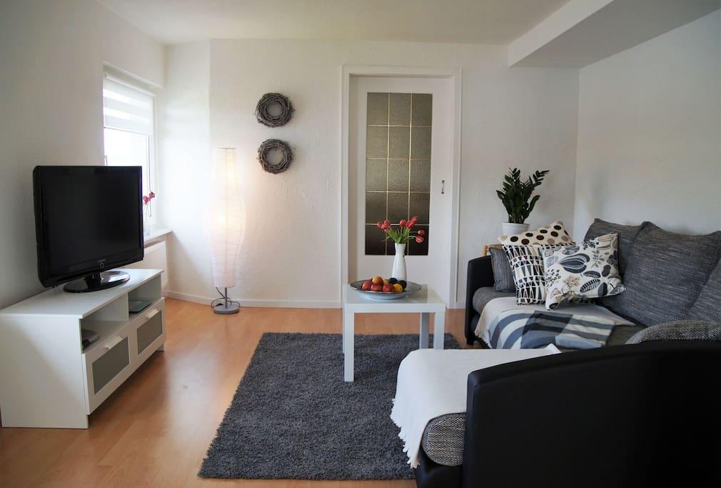Wohnbereich mit Schlafcouch und TV