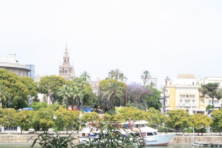 Vista de la Catedral y la Giralda