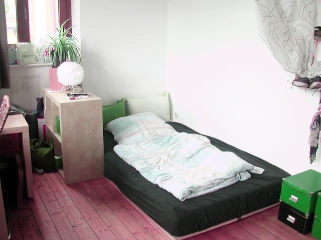 Schönes Zimmer in Altstadtnähe - Heidelberg - Apartament