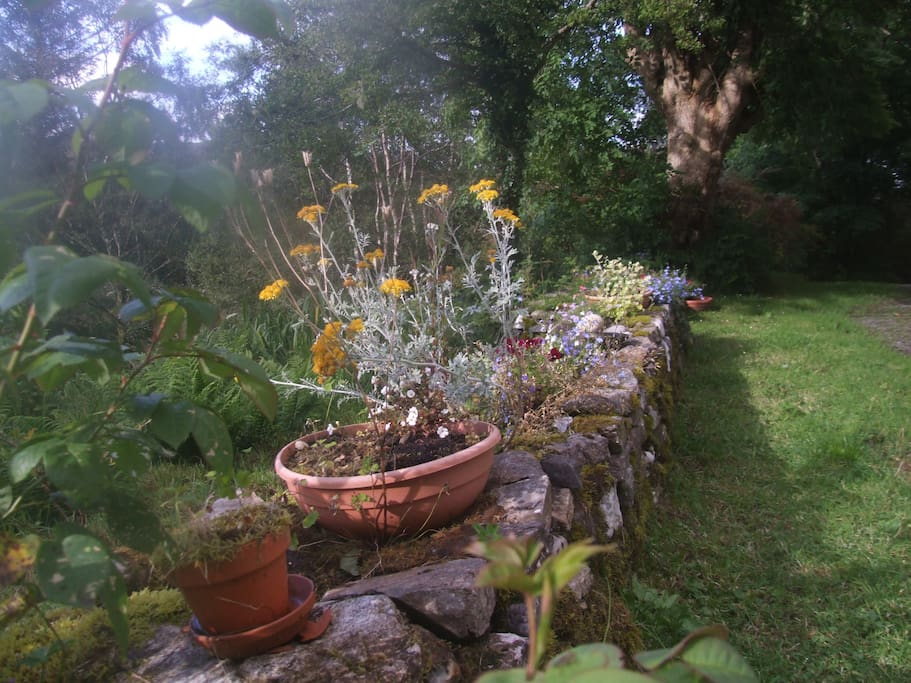 Garden wall at the front of the house