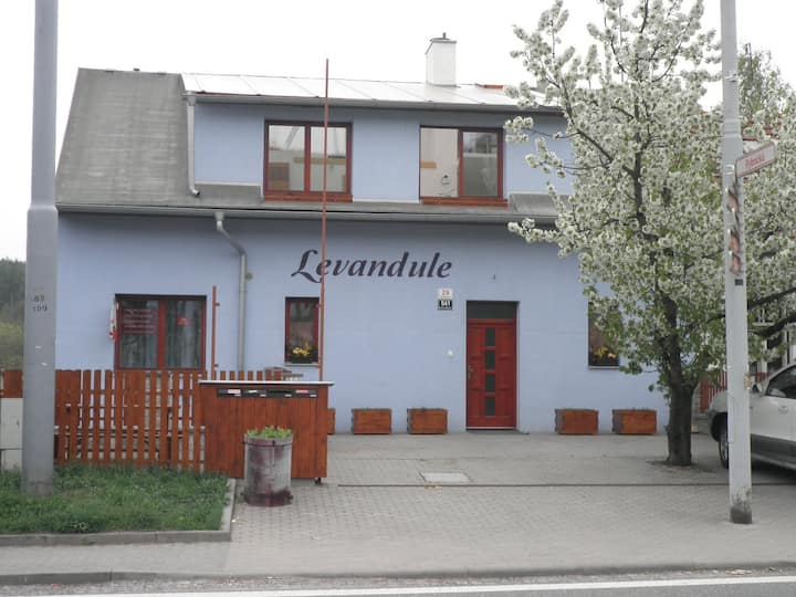 House Levandule - double room