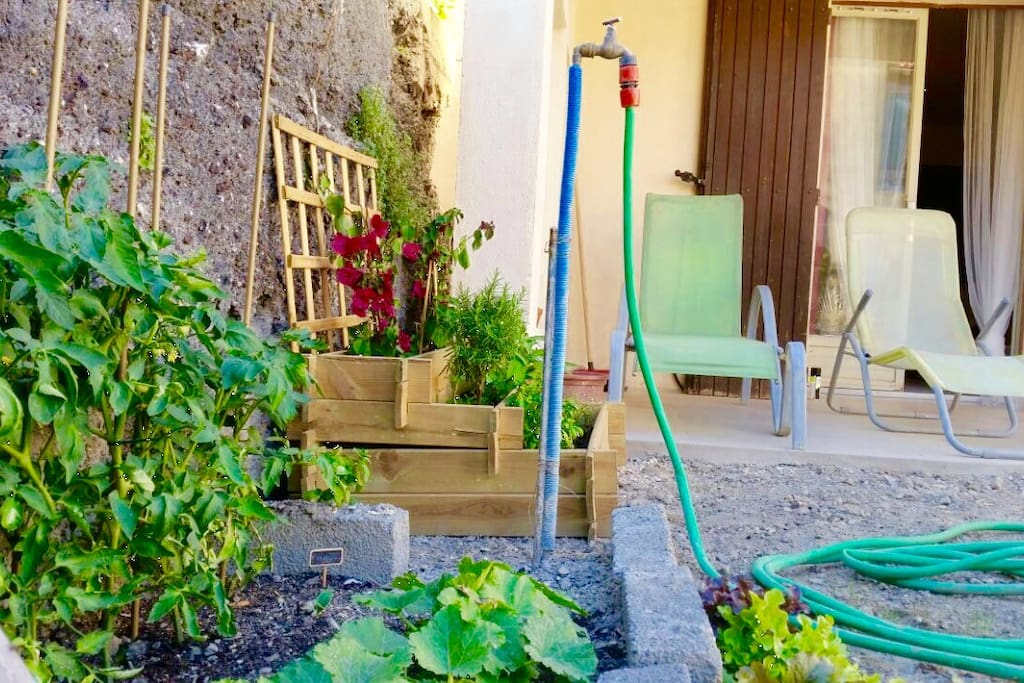The vegetable garden, if you're lucky you'll have some frech vegetable during your stay