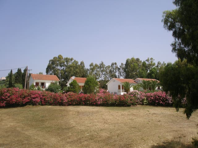 Nerissa apartments No 2 - Cephalonia
