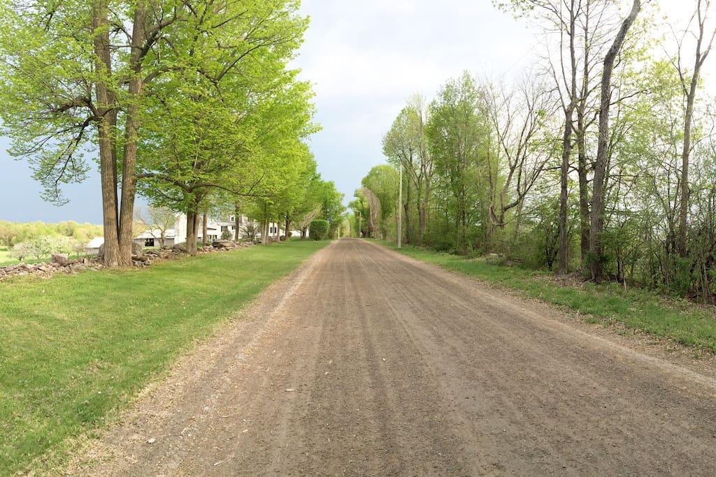 Road to walk, bike, x-country ski