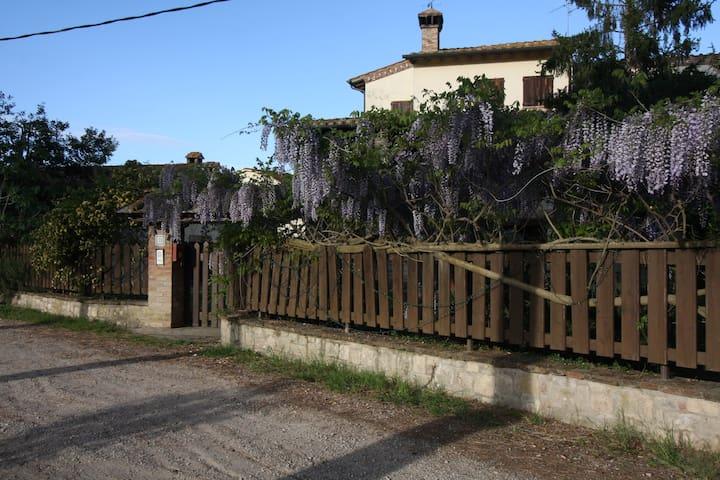 Gattavecchia - Castiglione del Lago - Casa