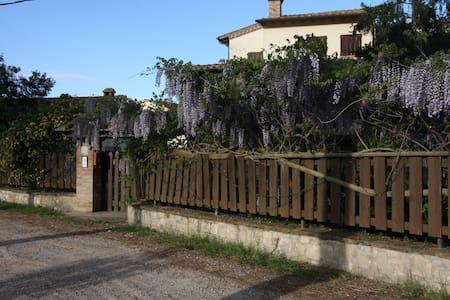 Gattavecchia - Castiglione del Lago
