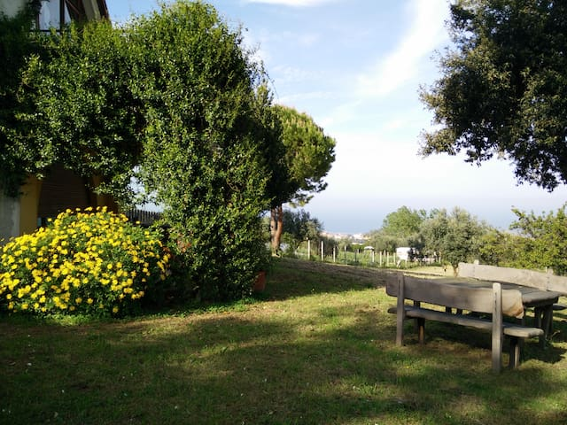 Villa Rachele immersa nel verde - Potenza Picena - Appartement