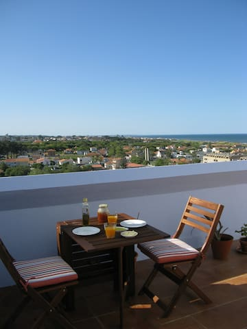 BLUE FLAT ON MIRAMAR BEACH, Porto, PT - Porto - Apartment