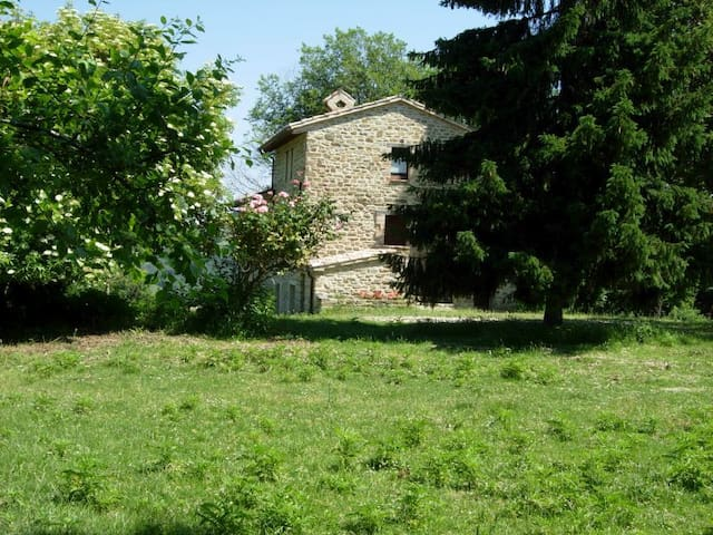 B&B BOSCOVECCHIO ASSISI - Assise - Bed & Breakfast