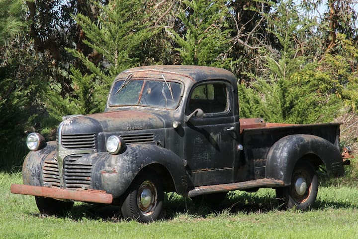 1946 Dodge in the Field of Dreams
