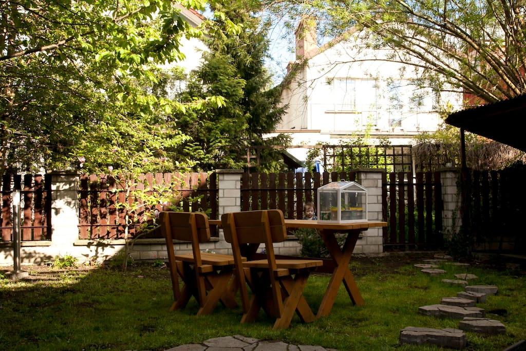 Ogród tył domu