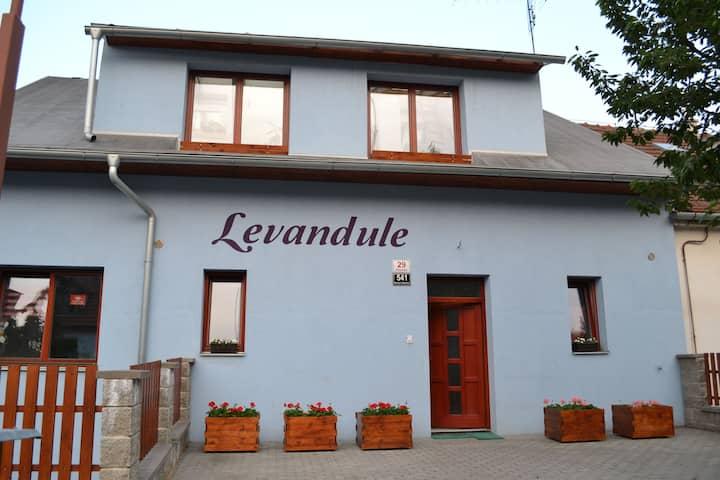House Levandule
