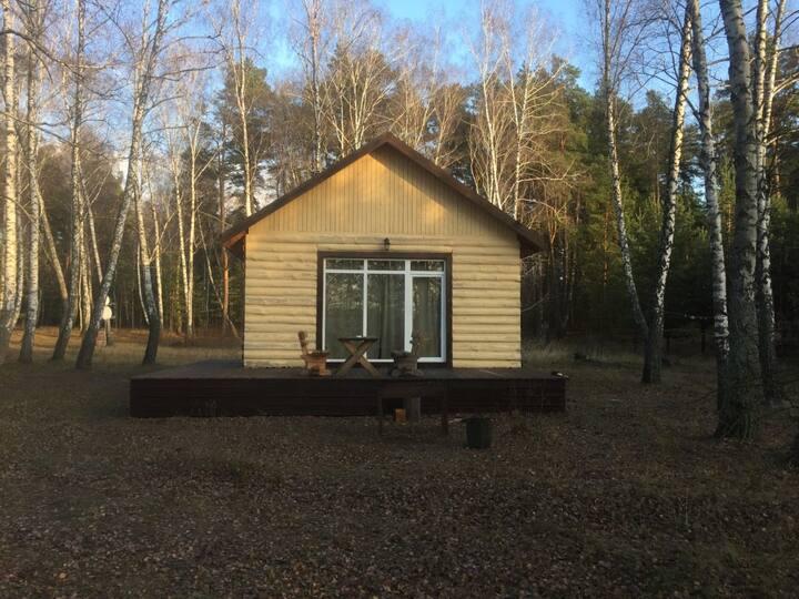 Комфортабельный дом в лесу