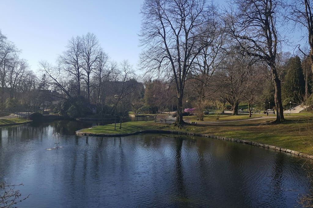 Vakre Nygårdsparken  - et steinkast unna!