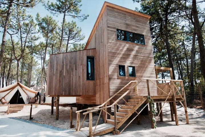 TREEHOUSE WIDE