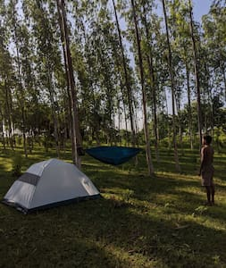 Little Planet India | camping | glamping