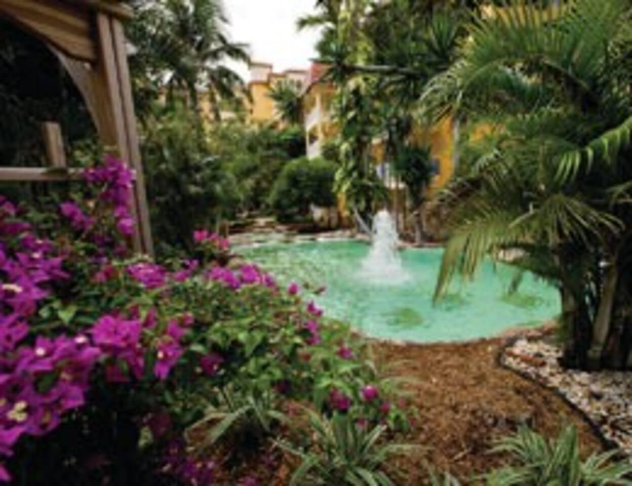 Wyndham Sea Gardens- studio sleep 4 - Resorts for Rent in Pompano ...