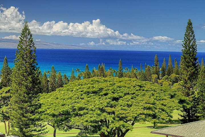 Breathtaking Ocean Views Gold! - Lahaina