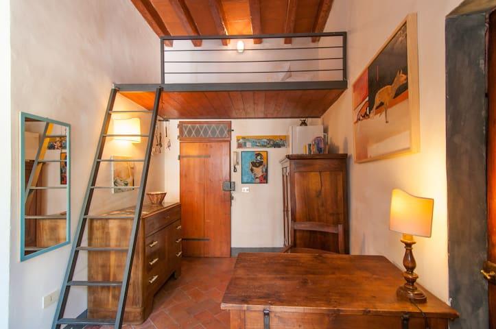 Small STUDIO - S. Spirito, Oltrarno - Florenz