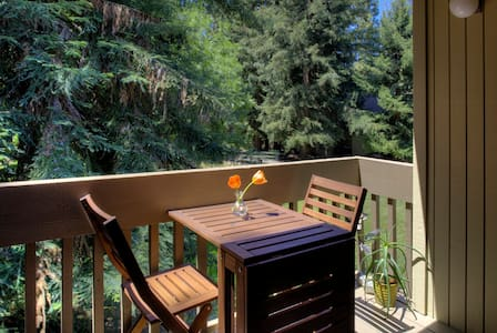 Beautiful 1 Bedroom near Downtown - Mountain View