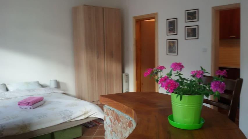 Apartman Irina - Cetinje - Appartement