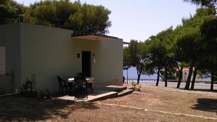HOLIDAY HOUSE FOR FAMILY OR FRIENDS - PRIMOŠTEN - House