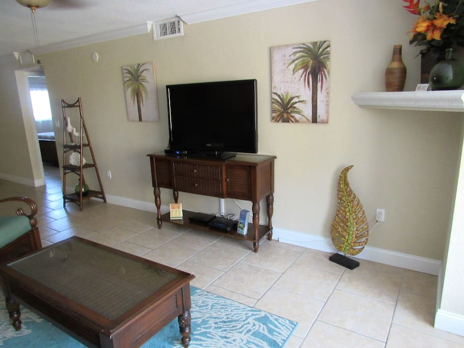 Flat screen tv and DVD player in living room