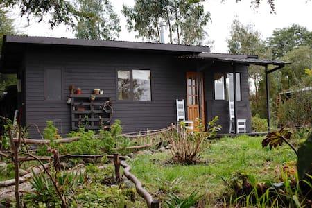 Cabin on 100 acre Seaside Farm