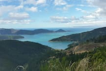 Port Underwood.  Not the Marlborough Sounds but still well worth seeing.  A beautiful and very interesting half-day road-trip.
