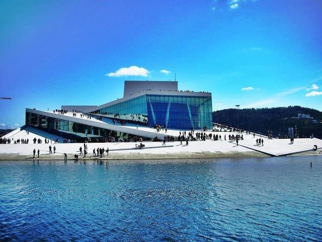 Next to the Opera, Sea view, Close to the Central. - Oslo - Condominio